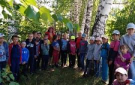 Лес зеленый – друг наш лучший